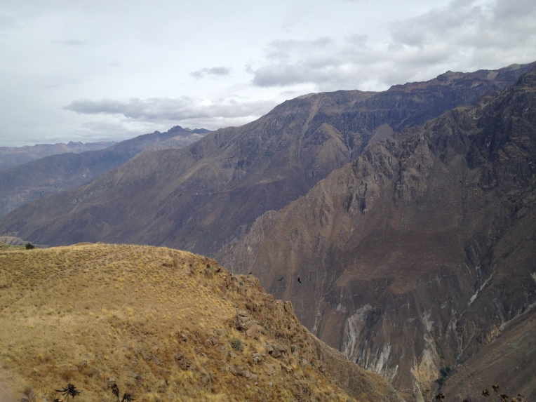 two condors in the distance // A Slice of Peru