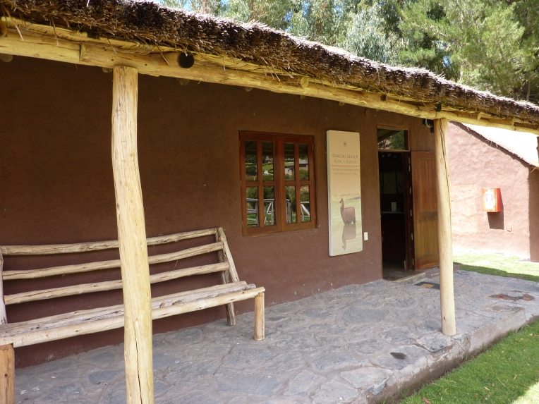 alpaca museum - Colca Lodge // A Slice of Peru