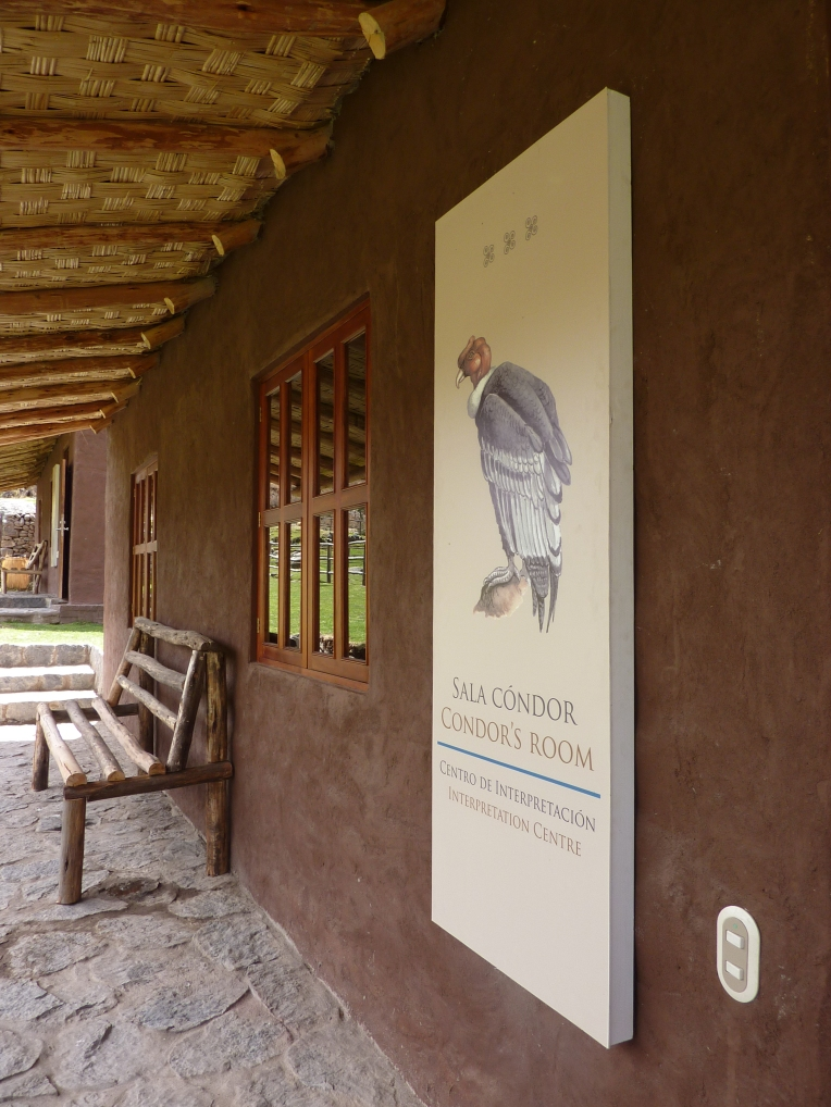 condor museum - Colca Lodge // A Slice of Peru