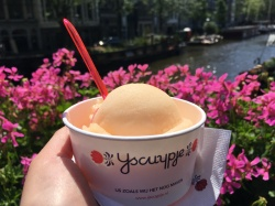 Yscuypje, Amsterdam // The Little Edition