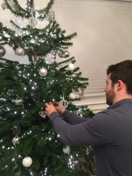 decorating the tree // The Little Edition