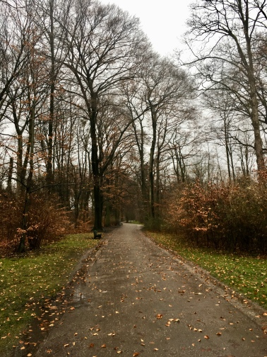 Englischer Garten, Munich, Germany // The Little Edition