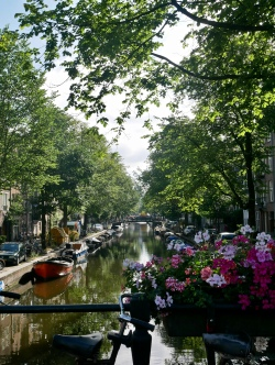 Amsterdam // The Little Edition