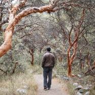 Huascaran National Park // The Little Edition