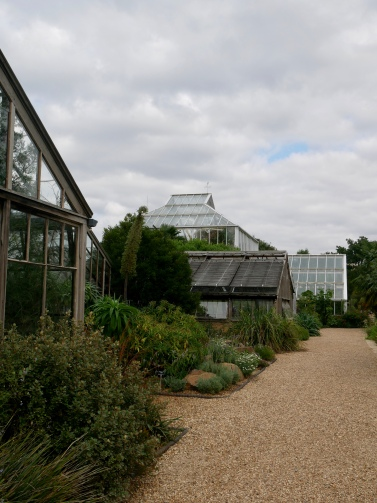Cambridge Botanic Garden // The Little Edition