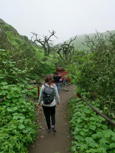 Reserva Nacional de Lachay, Lima, Peru // The Little Edition