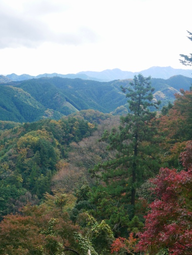 Mount Takao, Japan // The Little Edition