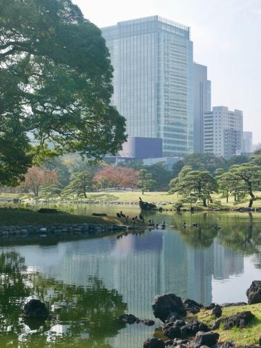 Hama-rikyu Gardens, Tokyo, Japan // The Little Edition